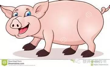 一只特立独行的猪就