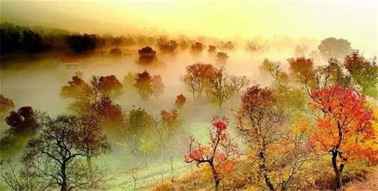 缩小招!湖北省旅游委推出40条乡村旅游线路