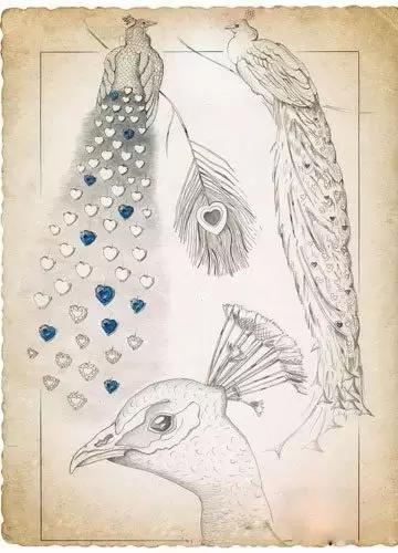这枚最新诞生的孔雀手镯,源自一款孔雀形耳环的设计手稿,精美的孔雀图片