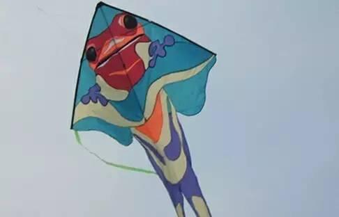 diy老鹰风筝手绘图案