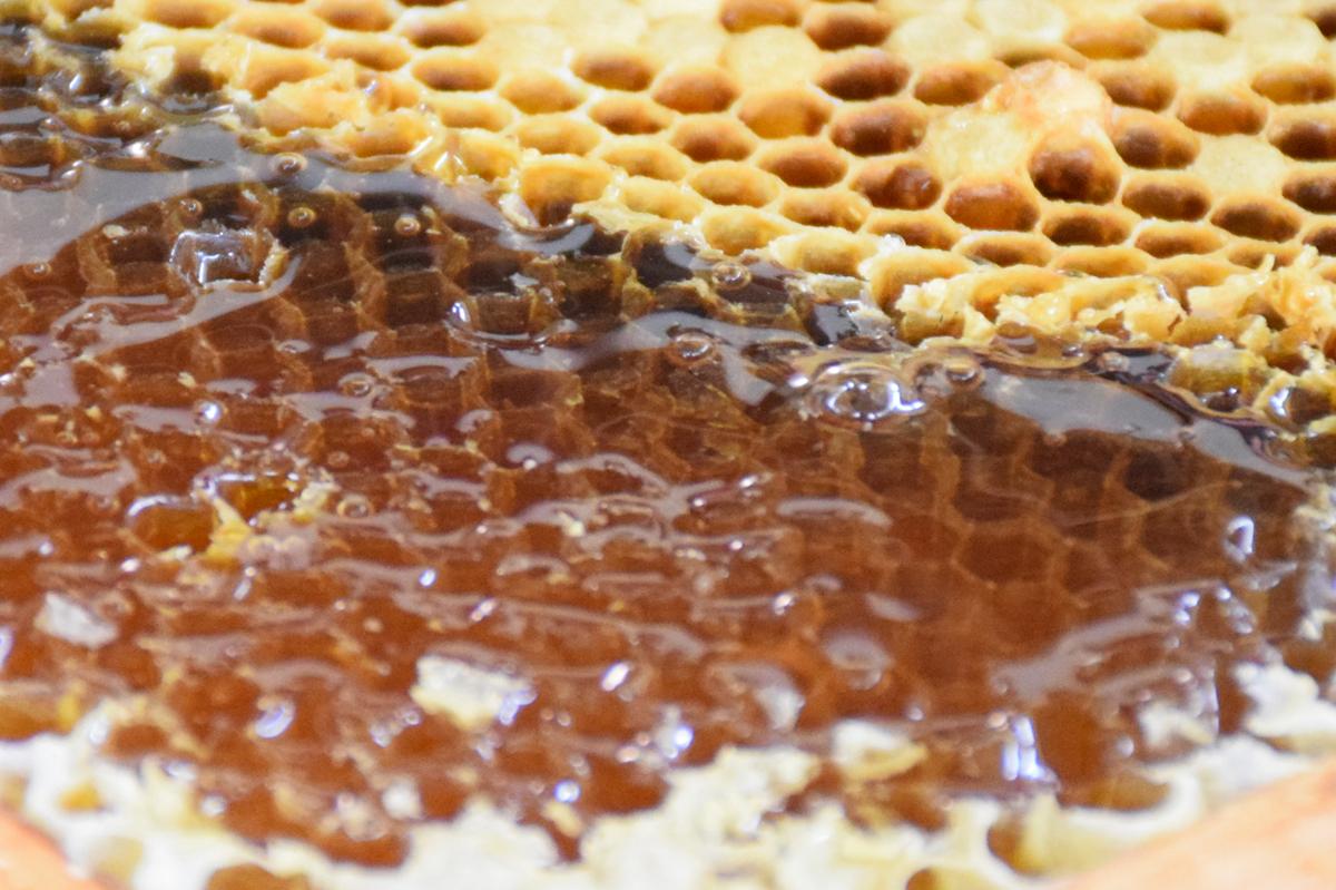 ...以蜂蜜一起吃吗?_蜂花粉和蜂蜜一起吃有什么好处?_中国蜂蜜网