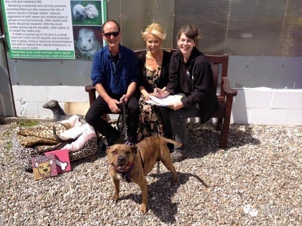 收容所苦等6年,狗狗终于遇到好主人,还成为好莱坞明星!-蠢萌说