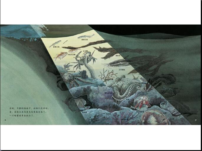 http://mt.sohu.com/20160924/n469113705.shtml mt.sohu.com true 童乐读书会 http://mt.sohu.com/20160924/n469113705.shtml report 2754 孩子们想不想知道有哪些动物是生长在海边的呢?看完这个故事后你就会明白。====关于稻草人童书馆====稻草人童书馆是专业的童书内容提供商和儿童阅读推广机构,已出