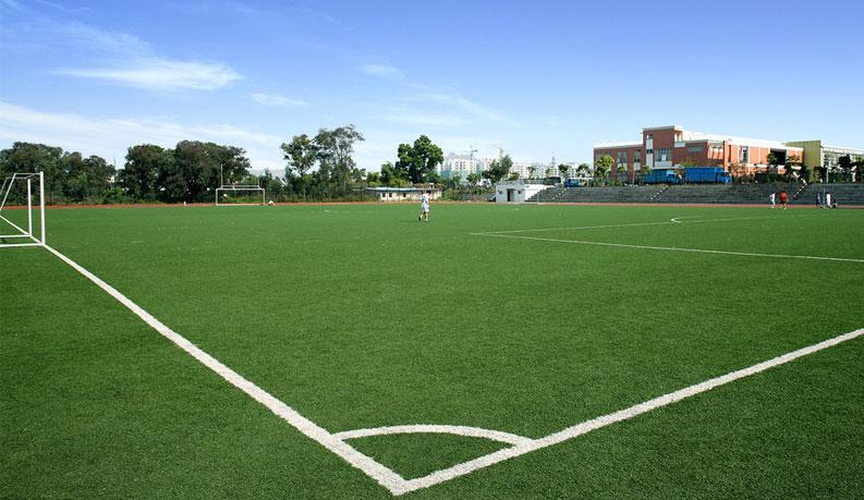 足球场人造草坪多少钱一平方