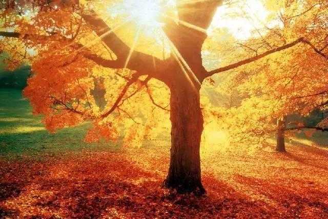 【摄部落】秋季风光摄影巧