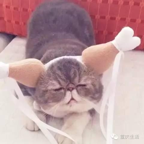 姑姑撸影院_过儿,我是姑姑呀,你不认识我了嘛!