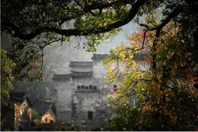 中国3大赏秋地之一,比喀纳斯秋天美10倍,这个胸漫画揉被美女图片