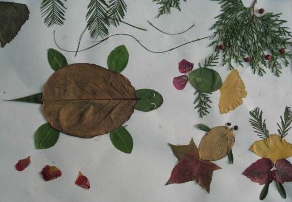 秋天,我们和孩子一起去看落叶跳舞!