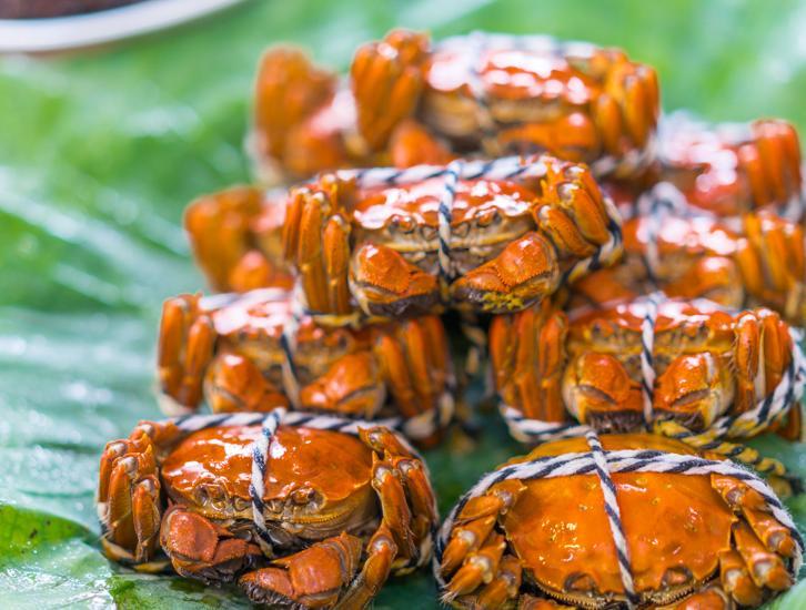 阳澄湖边,吃一只真正的大闸蟹