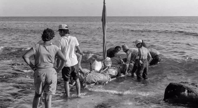 因堵车,美国一小岛宣布独立,建国战争坚持60秒后投降了… - 木沐慕 - 木沐慕的博客