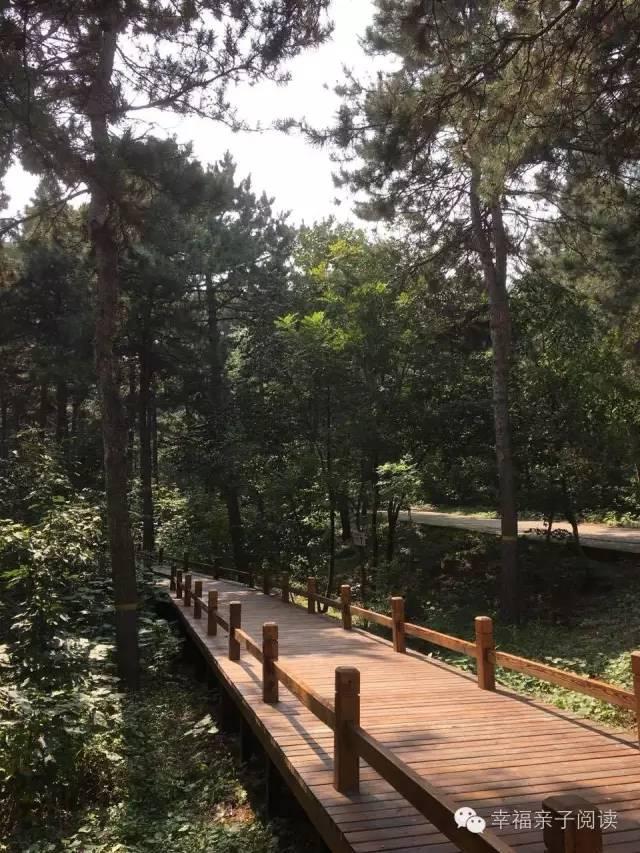 秋日,游西山国家森林公园
