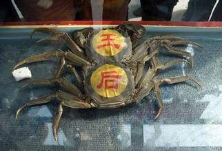 出炉蟹王蟹后 世界最贵的螃蟹是多少钱