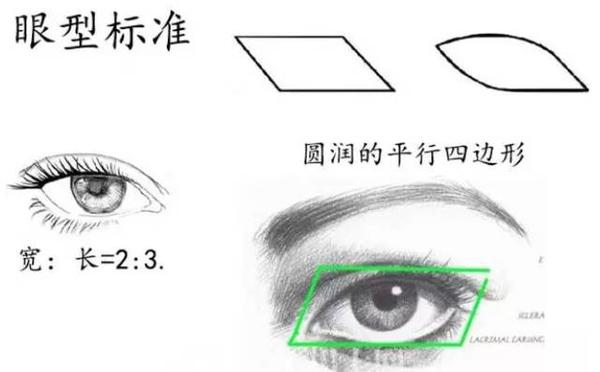 【美立资讯】双眼皮凭什么就比单眼皮好看?933 作者: 来源: 发布时间:2018-11-7 15:46