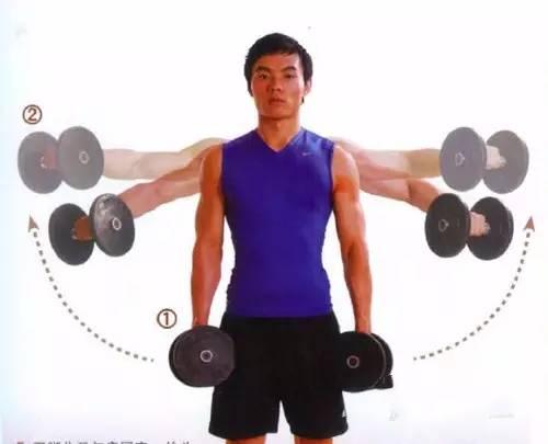 【组图】力量训练的减脂塑形效果比有氧训练更