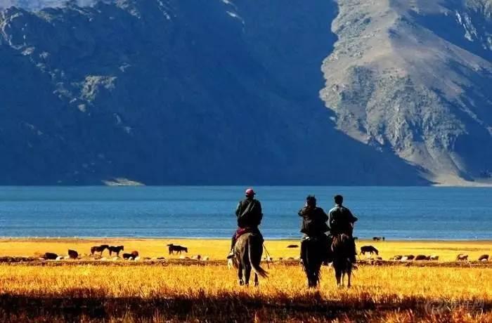 可可托海的人口_可可托海的牧羊人图片