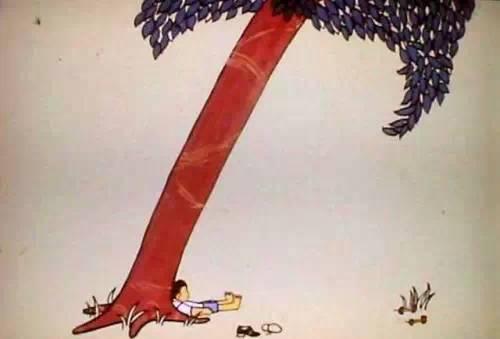男孩和树的故事读后感图片
