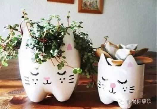 欢乐的小动物花盆,萌翻啦