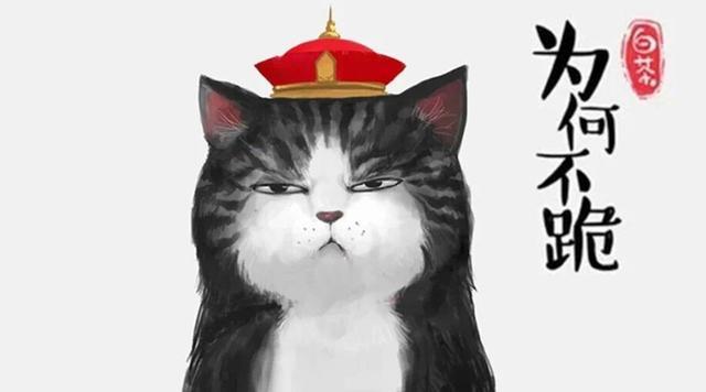 每日一蠢萌:喵皇陛下出巡,尔等为何不跪!