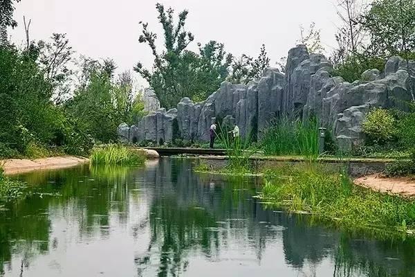 攻略get   教你如何以正确姿势打开西安植物园新世界!
