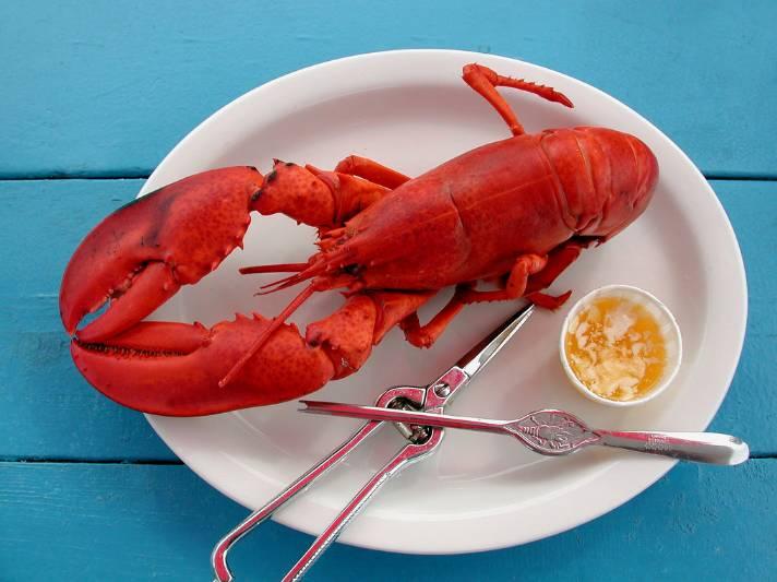 感恩节|走过有你,陪我们一起感谢二夹河蟹图片