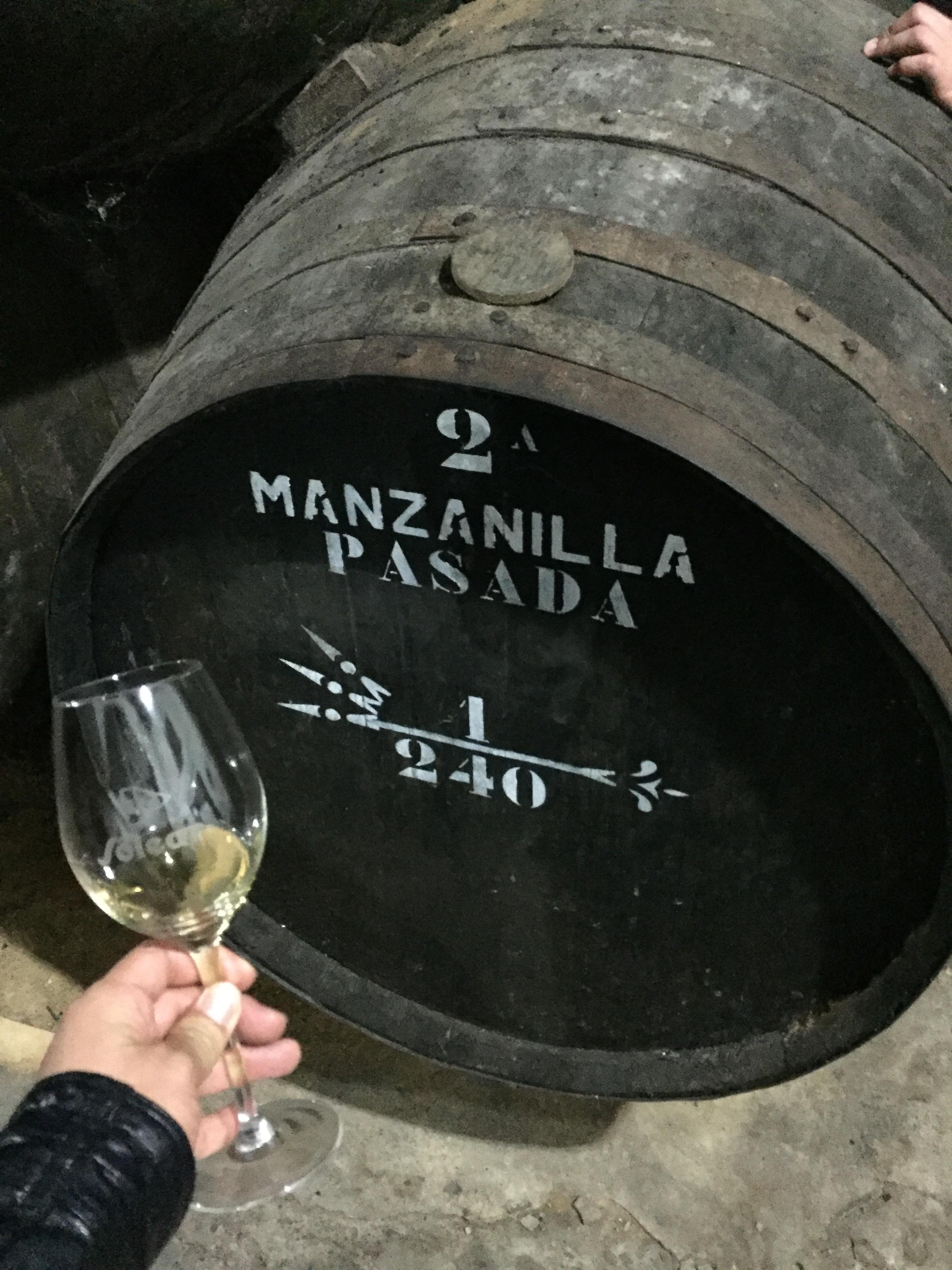西班牙雪莉酒官方认证讲师之旅第7张-葡萄酒博客