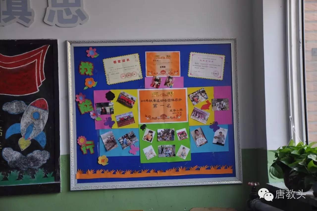 【校园show】龙华小学的班级文化——绿色书香班级 温馨学习乐园
