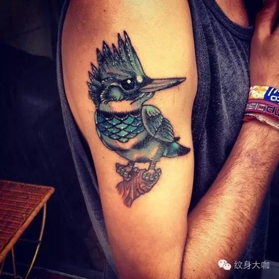 纹身素材:翠鸟