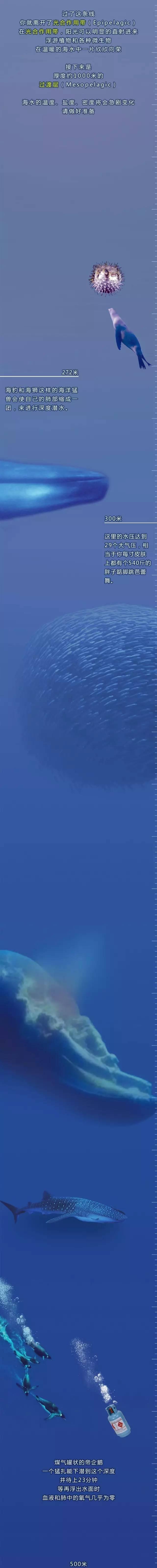 【知识普及】一张图看清海底1米到1万米都有啥?
