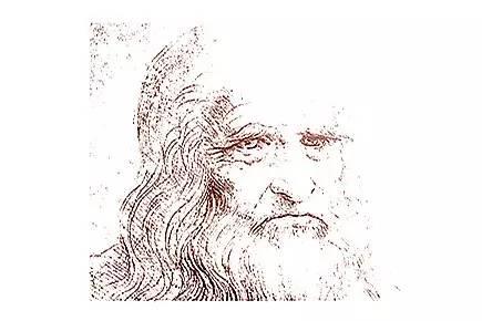 年轮创意手绘画