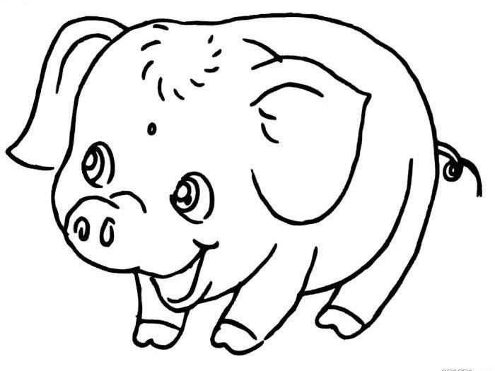 猪年手绘简笔画