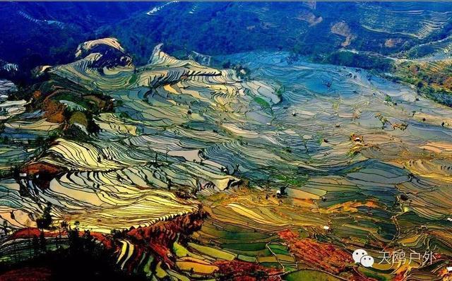 欧洲风情油画:去上海旅游这三个景区建议大家去但是别乱买东西