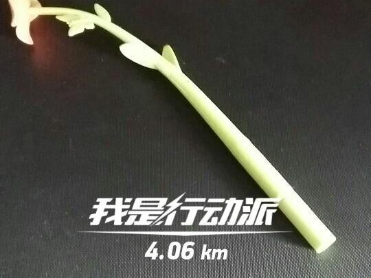 """【金算珠】跑步第430天,情绪"""""""