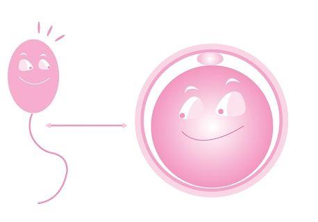 代孕妈妈如何培养优质的卵子