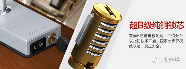 德施曼防盗家用锁智能指纹锁xt800