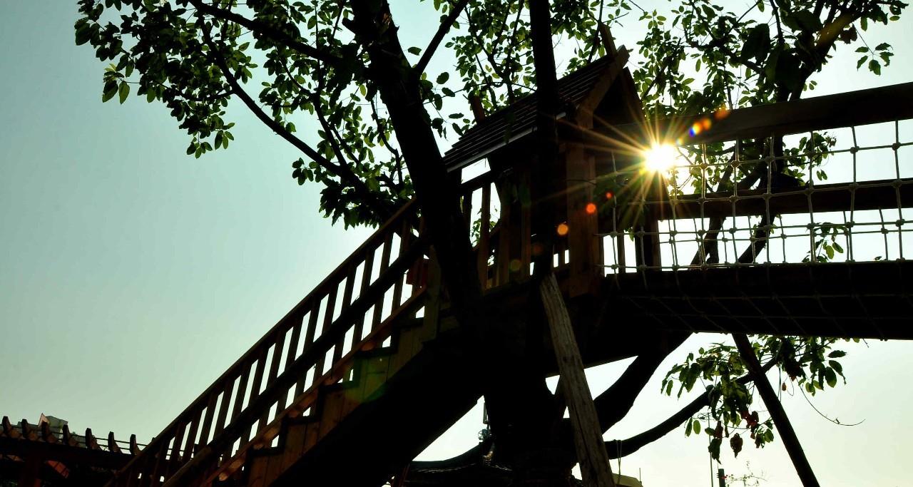 【走进北碚最美孩子】朝阳小学v孩子幼儿园:珍爱小学唯一的童年科学生活化校园图片