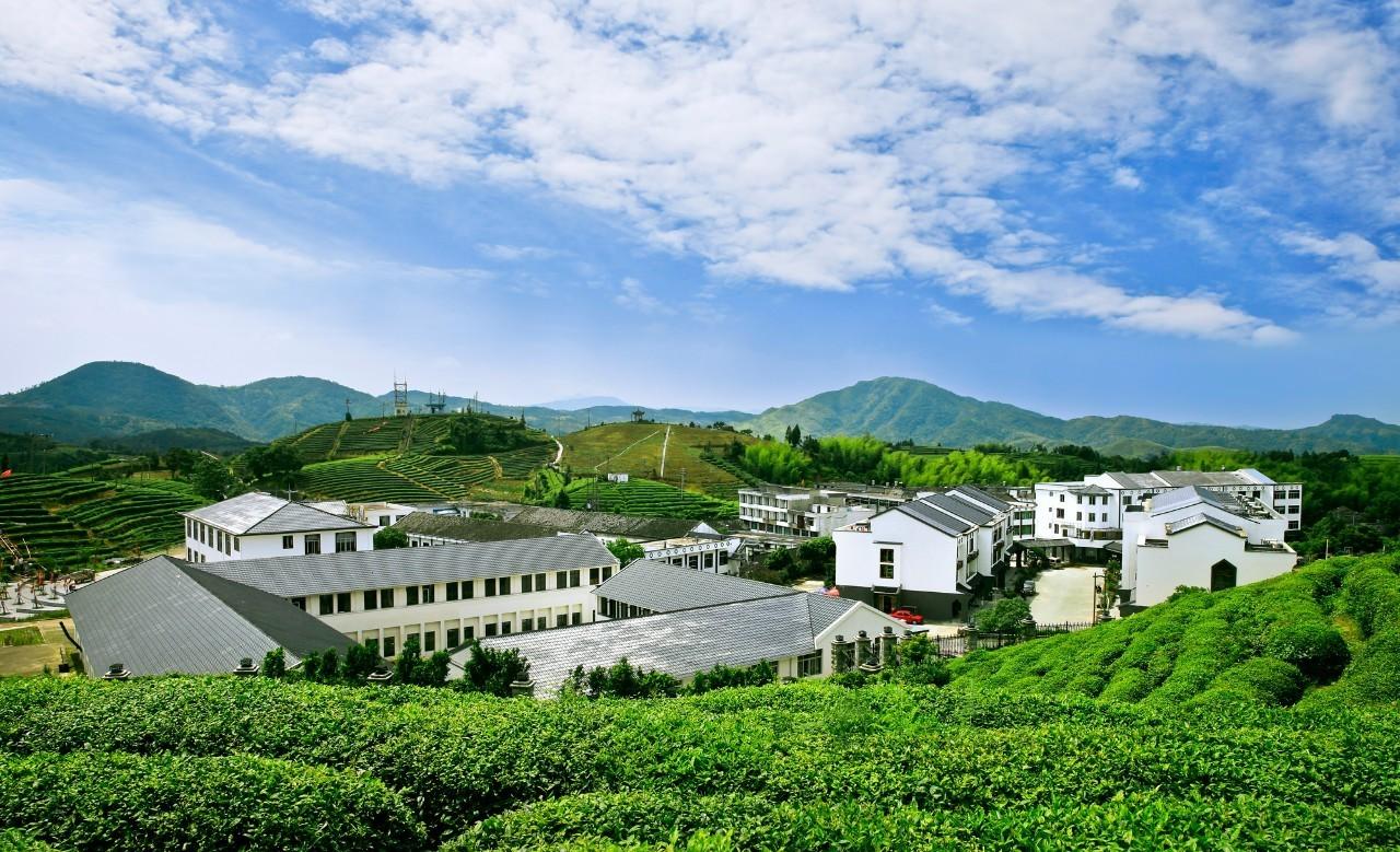 """温州""""美丽乡村""""多兮多,哪个是你的最爱?图片"""