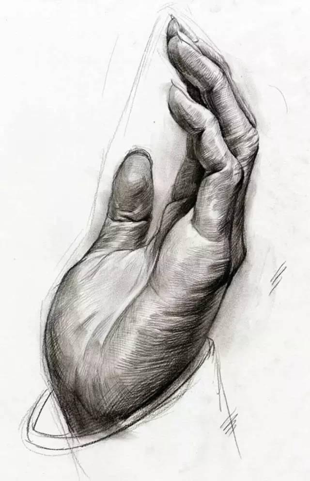 不同角度手部特写素描