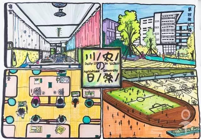 【朋友圈】四川这所大学的手绘图超好看,简直美哭了!