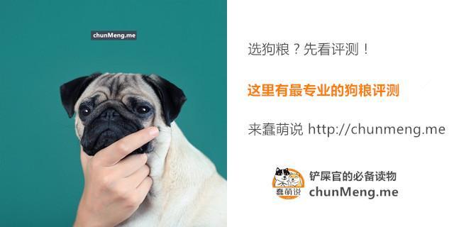 一则关于狗狗做梦的最新研究让无数网友哭红了鼻子!-蠢萌说