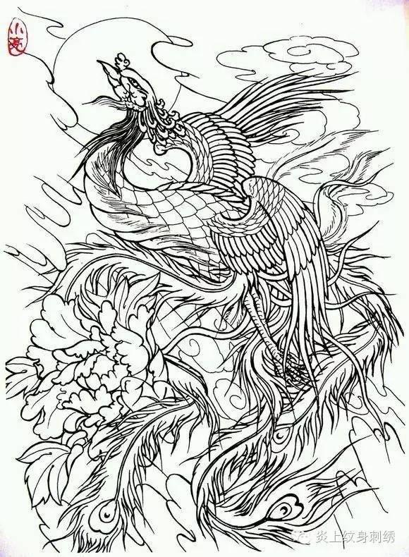 凤凰纹身手稿-搜狐