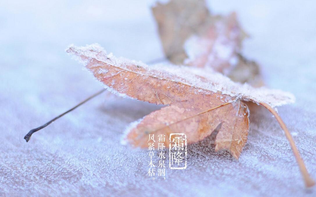 武汉 霜降时节已至,不要盲目 秋冻 哦