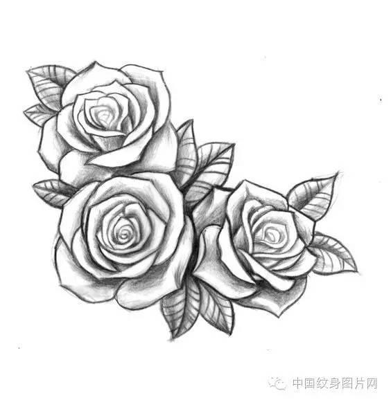 纹身素材 一些花的手稿图片