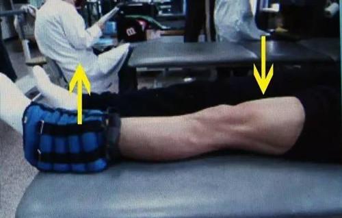 如何锻炼我们重要的大腿肌肉力量--股四头肌