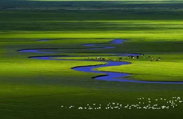 头琴与小提琴 父亲的草原母亲的河 ,太美了 降央卓玛 腾格尔演唱