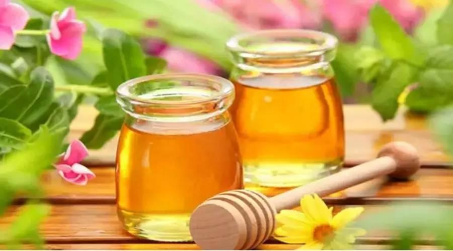 蜂蜜减肥法一天瘦一斤图片