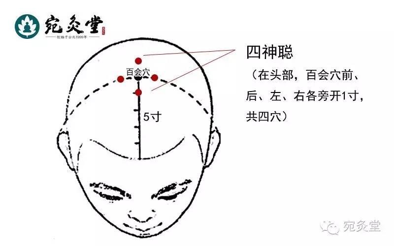 龙脊灸的原理_谁知道真正的归元灸原理是什么 效果如何