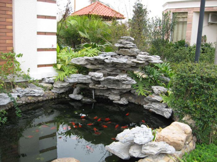 别墅庭院景观鱼池的设计效果哪种好图片