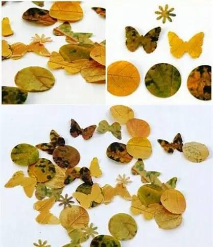 秋季落叶粘贴画