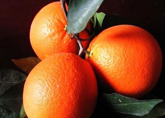 如何挑到好吃的赣南脐橙 - 微信公众平台精彩内