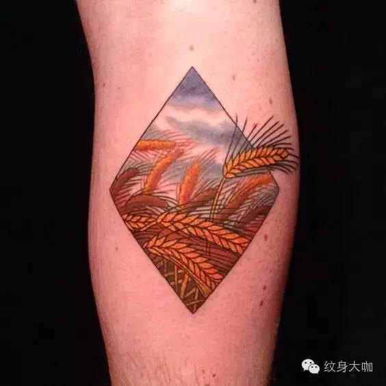 纹身素材:麦穗